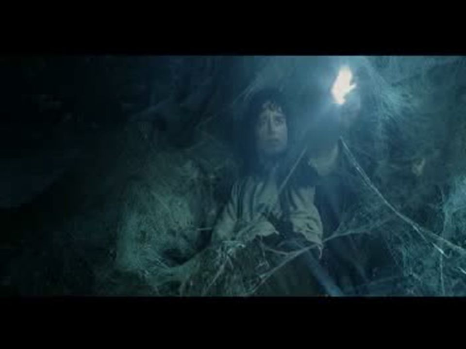 In this video Frodo gets stuck in a spiders web.