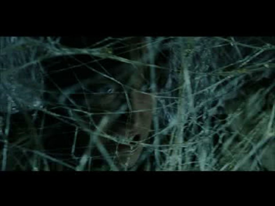 In this video Frodo cuts his way out of the spiders web.