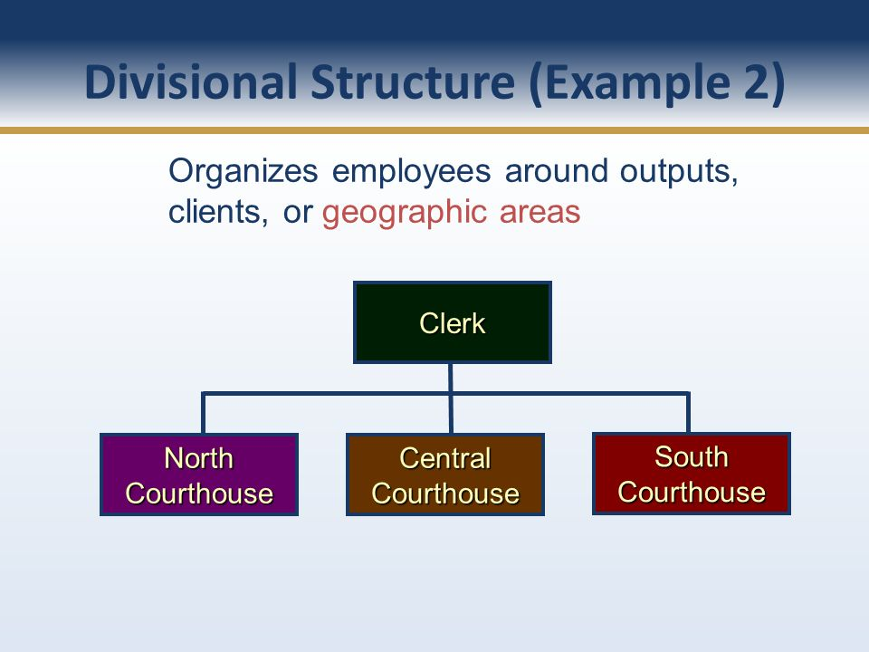 Divisional Structure (Example 2)