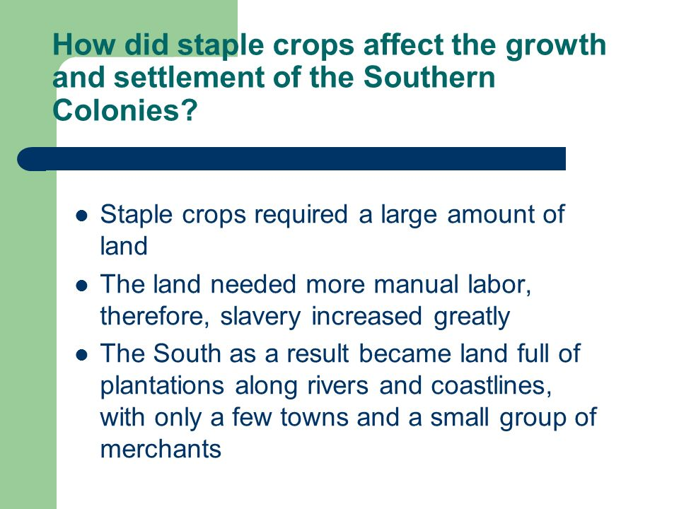 How did staple crops affect the growth and settlement of the Southern Colonies