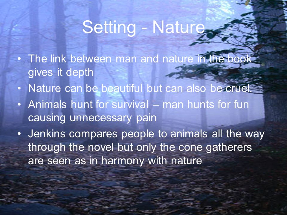 Setting - Nature The link between man and nature in the book gives it depth. Nature can be beautiful but can also be cruel.