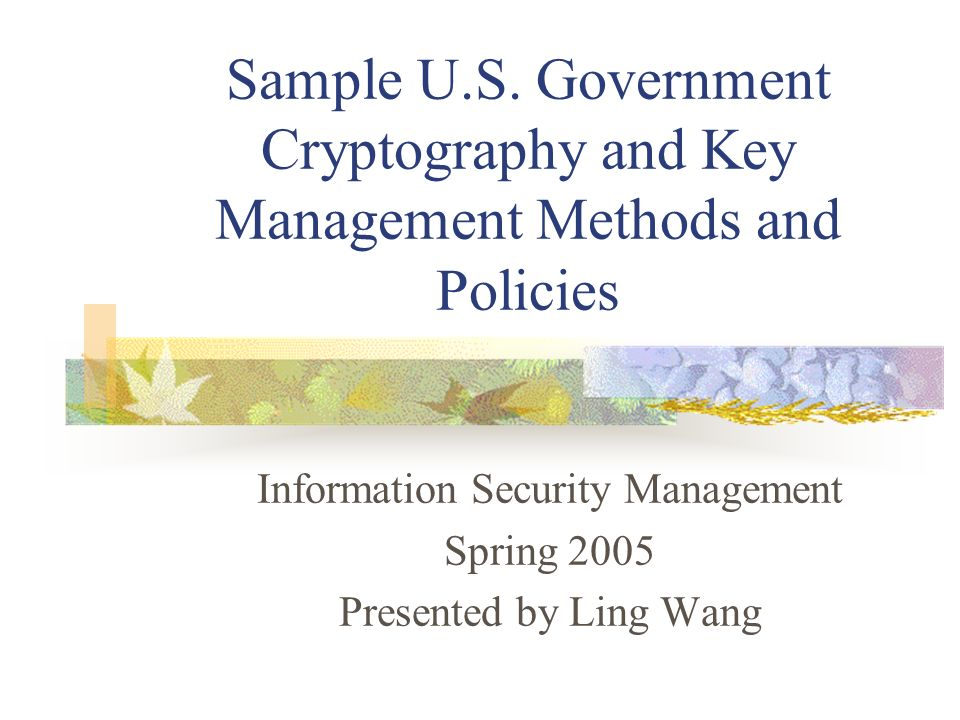 Information Security Management Spring 2005 Presented by Ling Wang