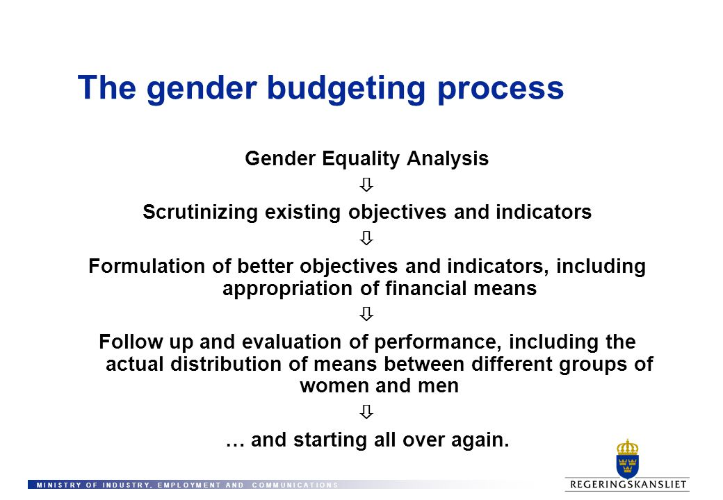 The gender budgeting process