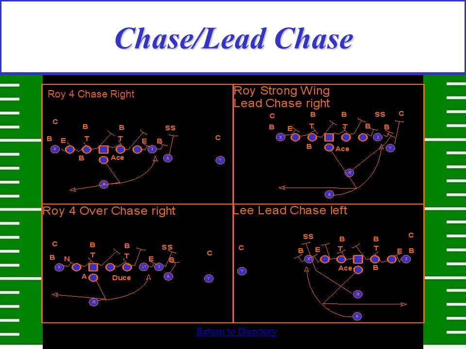 Chase/Lead Chase Roy 4 Chase Right