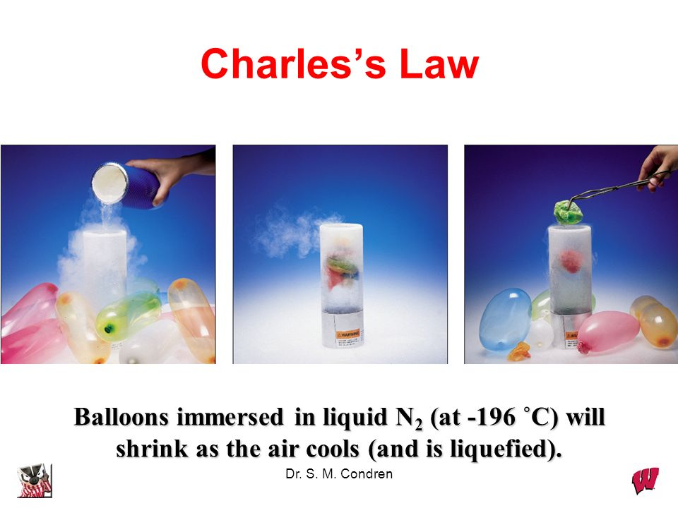 Charles's Law Balloons immersed in liquid N2 (at -196 ˚C) will shrink as the air cools (and is liquefied).