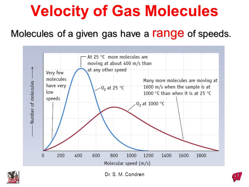 Velocity of Gas Molecules