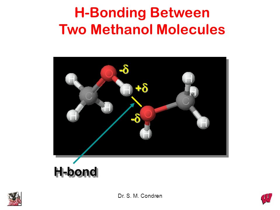 Two Methanol Molecules