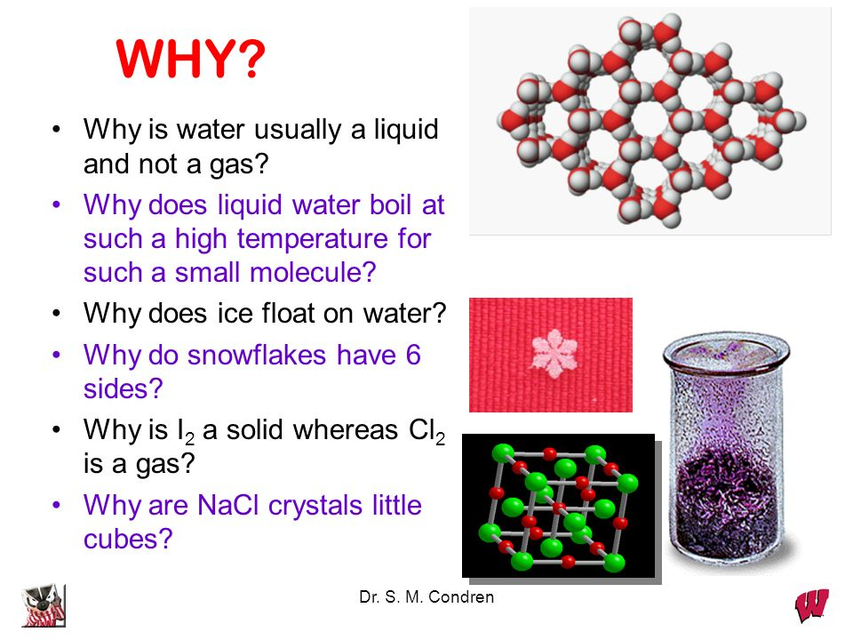 WHY Why is water usually a liquid and not a gas