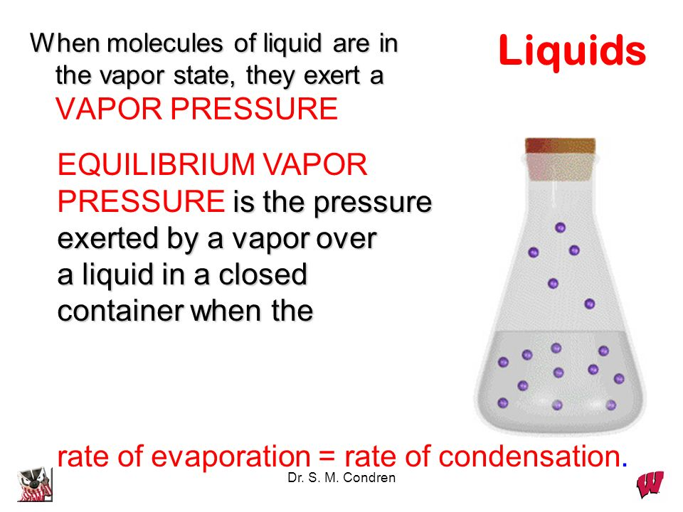 Liquids EQUILIBRIUM VAPOR PRESSURE is the pressure