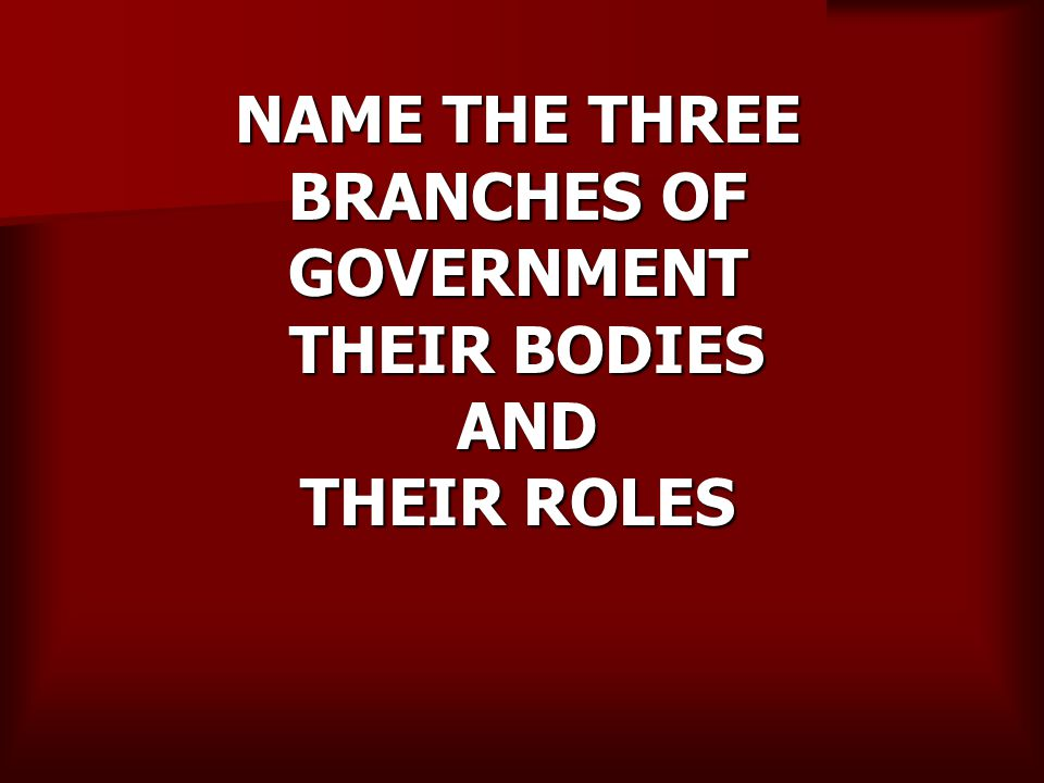 NAME THE THREE BRANCHES OF GOVERNMENT THEIR BODIES AND THEIR ROLES