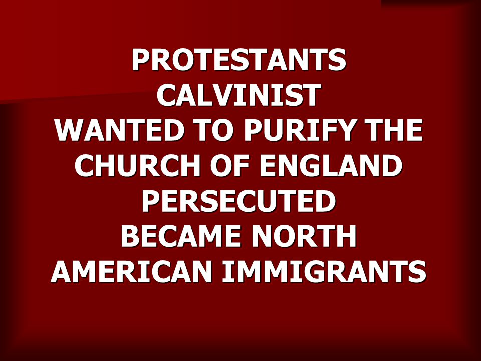 PROTESTANTS CALVINIST WANTED TO PURIFY THE CHURCH OF ENGLAND PERSECUTED BECAME NORTH AMERICAN IMMIGRANTS
