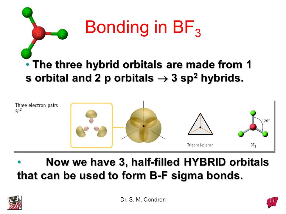 Bonding in BF3The three hybrid orbitals are made from 1 s orbital and 2 p orbitals  3 sp2 hybrids.