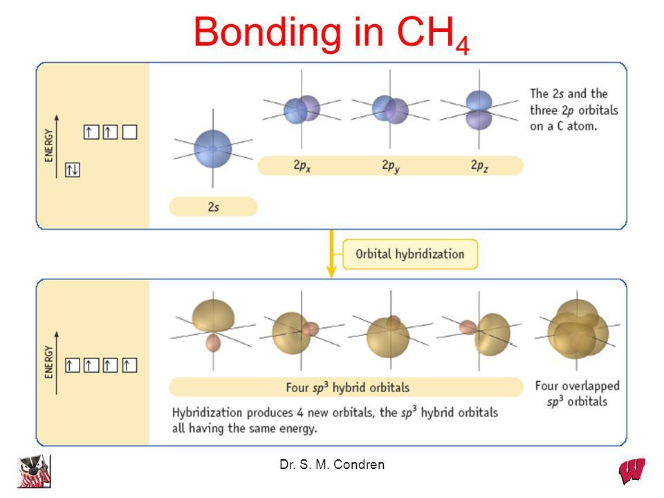 Bonding in CH4 Dr. S. M. Condren
