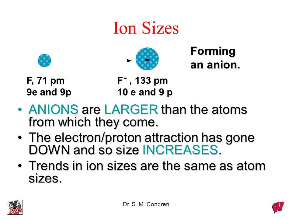 Ion Sizes ANIONS are LARGER than the atoms from which they come.