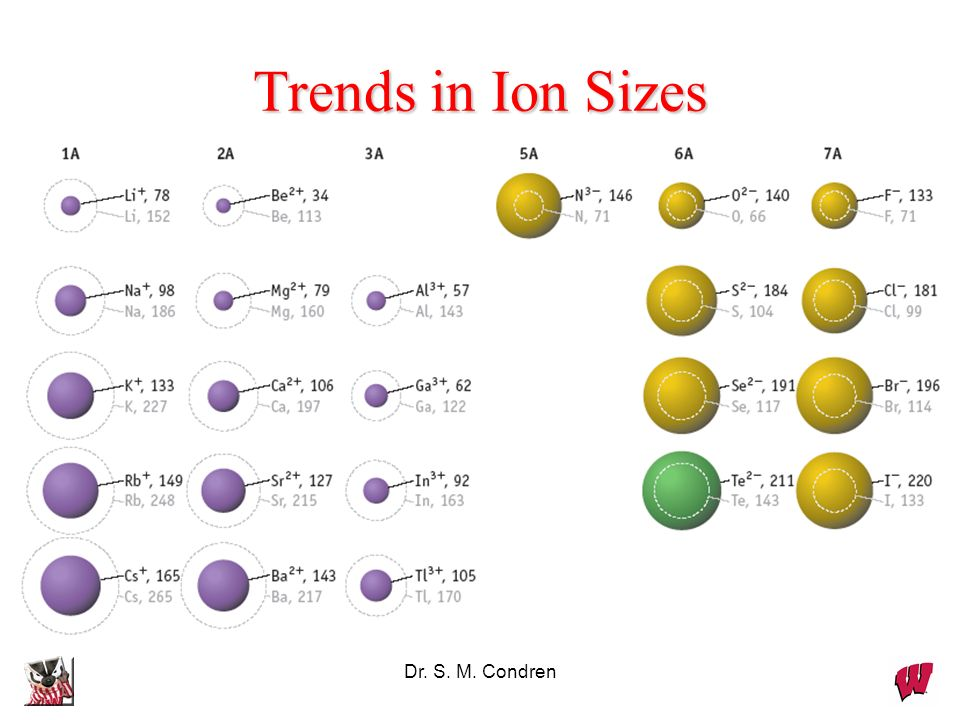 Trends in Ion Sizes Dr. S. M. Condren