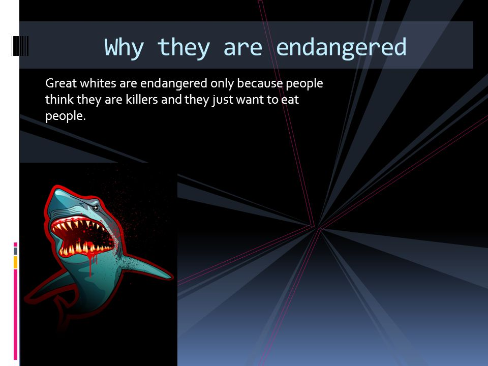 Why they are endangered