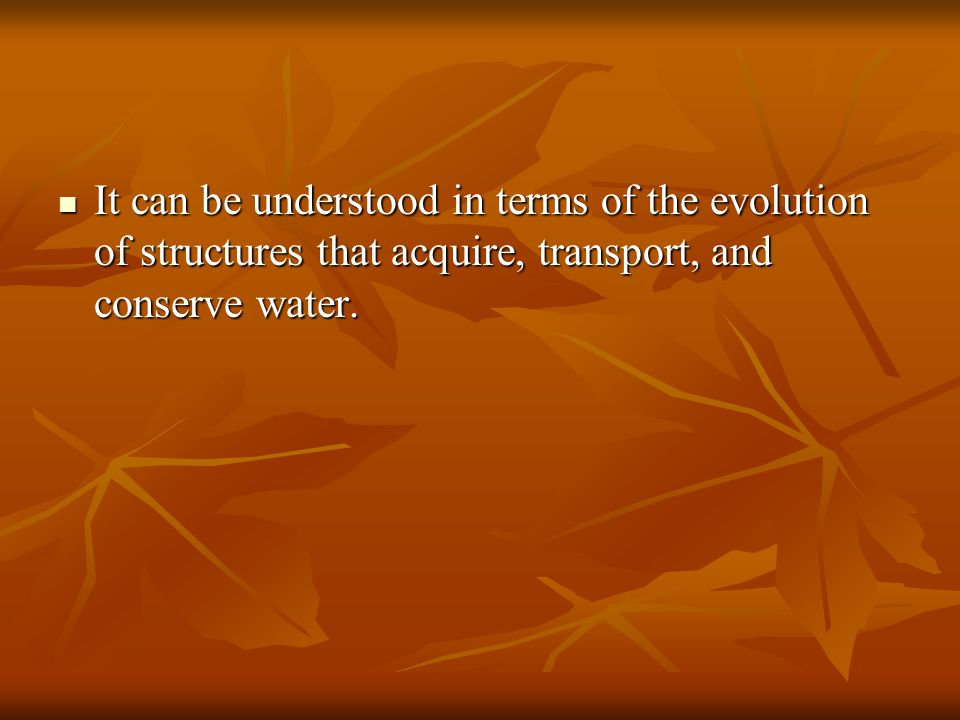 It can be understood in terms of the evolution of structures that acquire, transport, and conserve water.