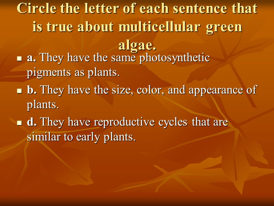 Circle the letter of each sentence that is true about multicellular green algae.