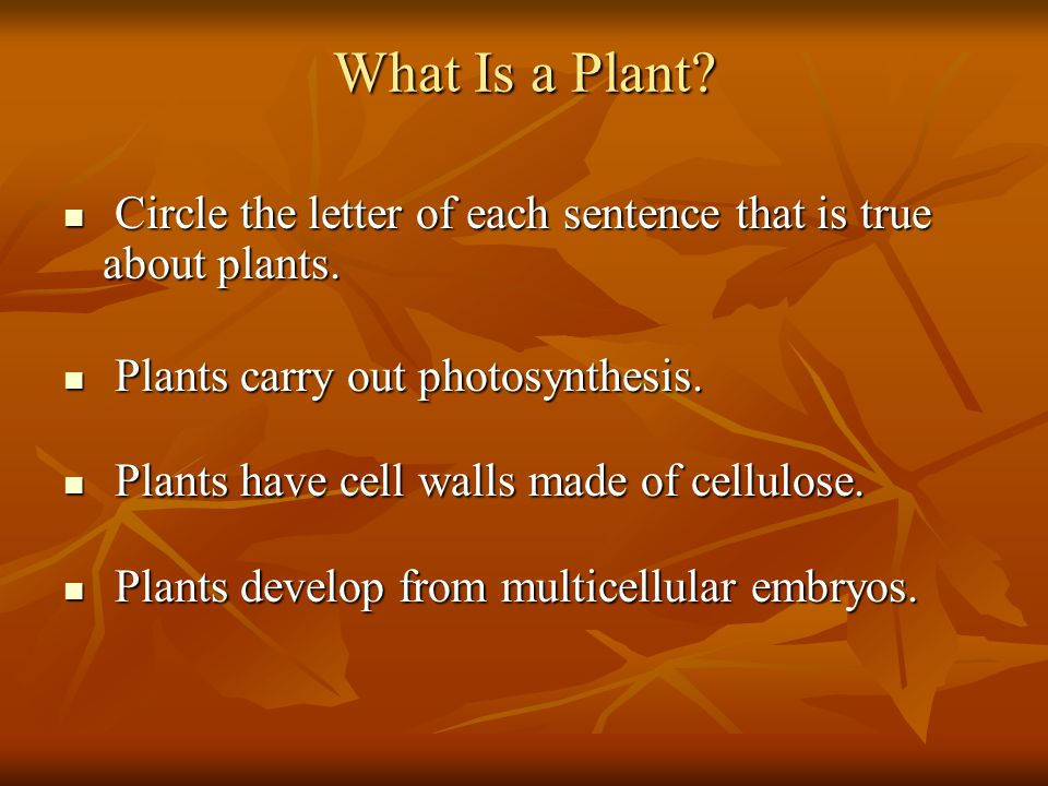 What Is a Plant Circle the letter of each sentence that is true about plants. Plants carry out photosynthesis.