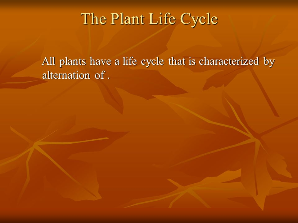 The Plant Life Cycle All plants have a life cycle that is characterized by alternation of .