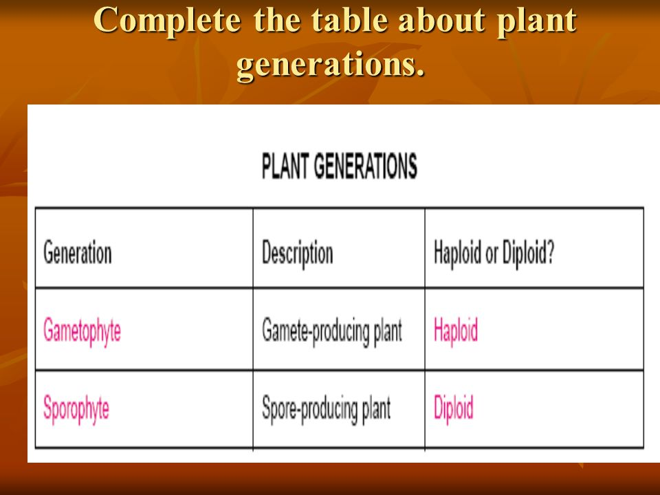 Complete the table about plant generations.