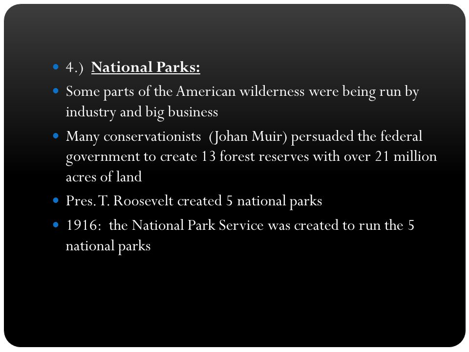 4.) National Parks: Some parts of the American wilderness were being run by industry and big business.