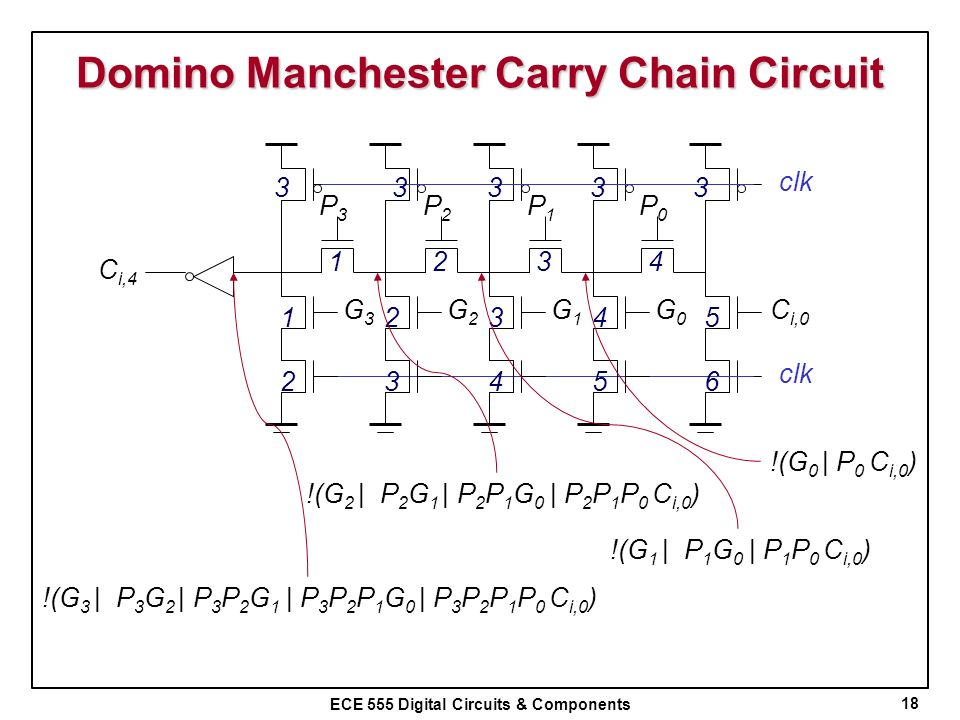 Domino Manchester Carry Chain Circuit