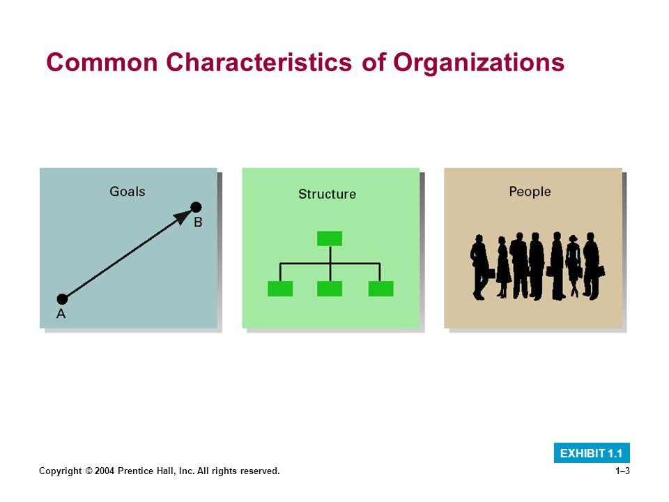 Common Characteristics of Organizations