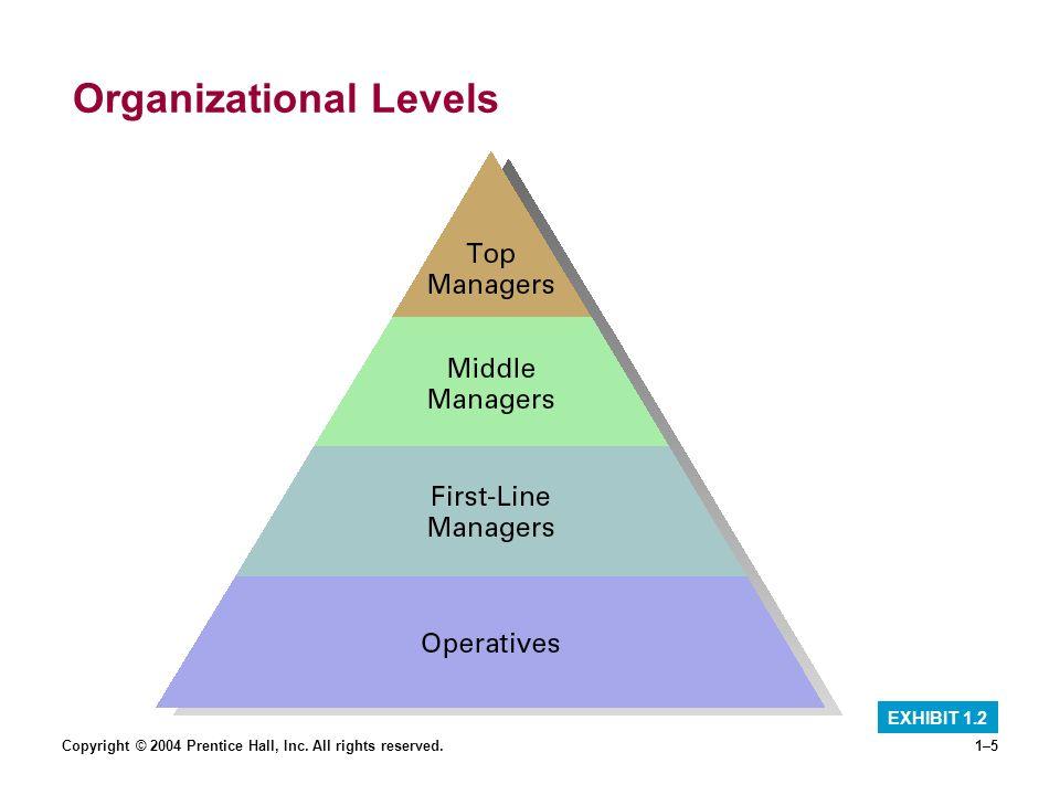 Organizational Levels