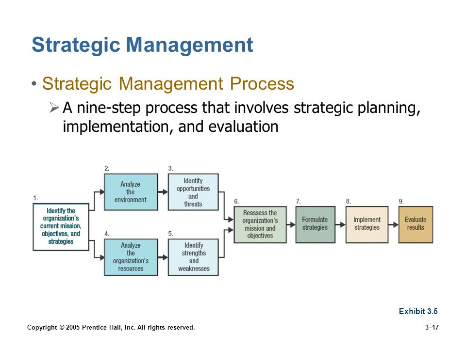 strategic management processes An outline of the strategic planning process, including mission statement, environmental scan, strategy formulation.