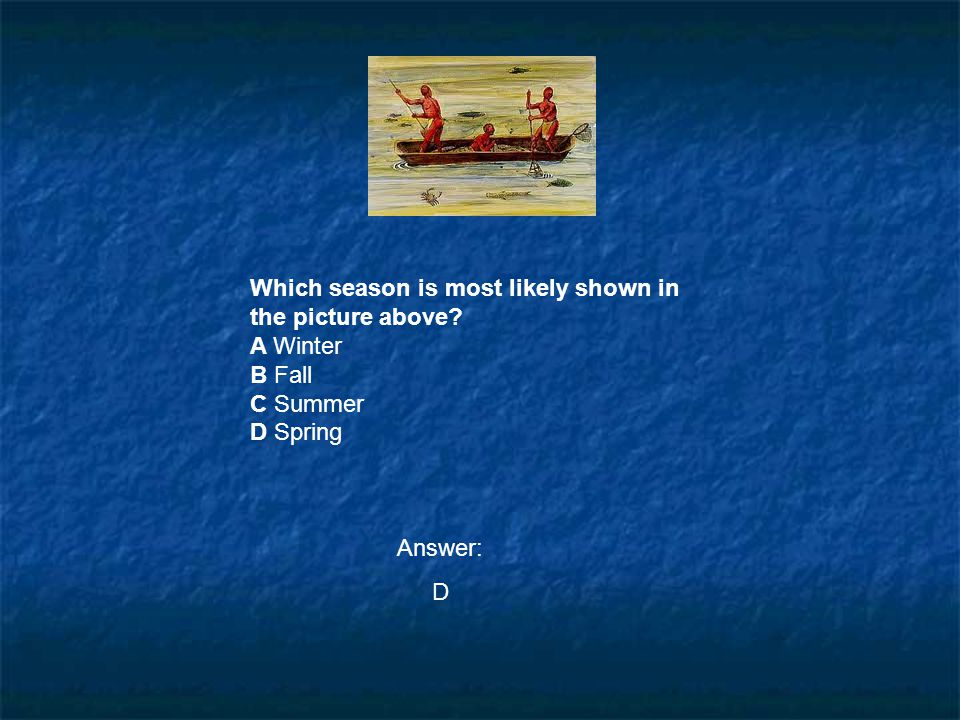 Which season is most likely shown in the picture above