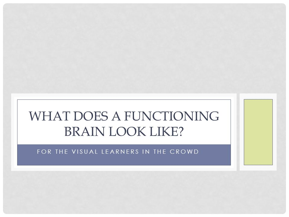 What does a functioning brain look like