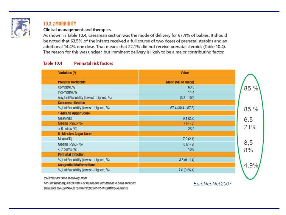 85 % 85 % 6.5 21% 8,5 8% 4.9% EuroNeoNet 2007