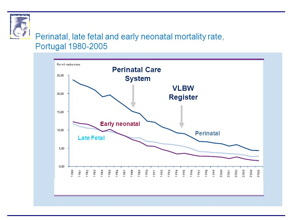 Perinatal, late fetal and early neonatal mortality rate,