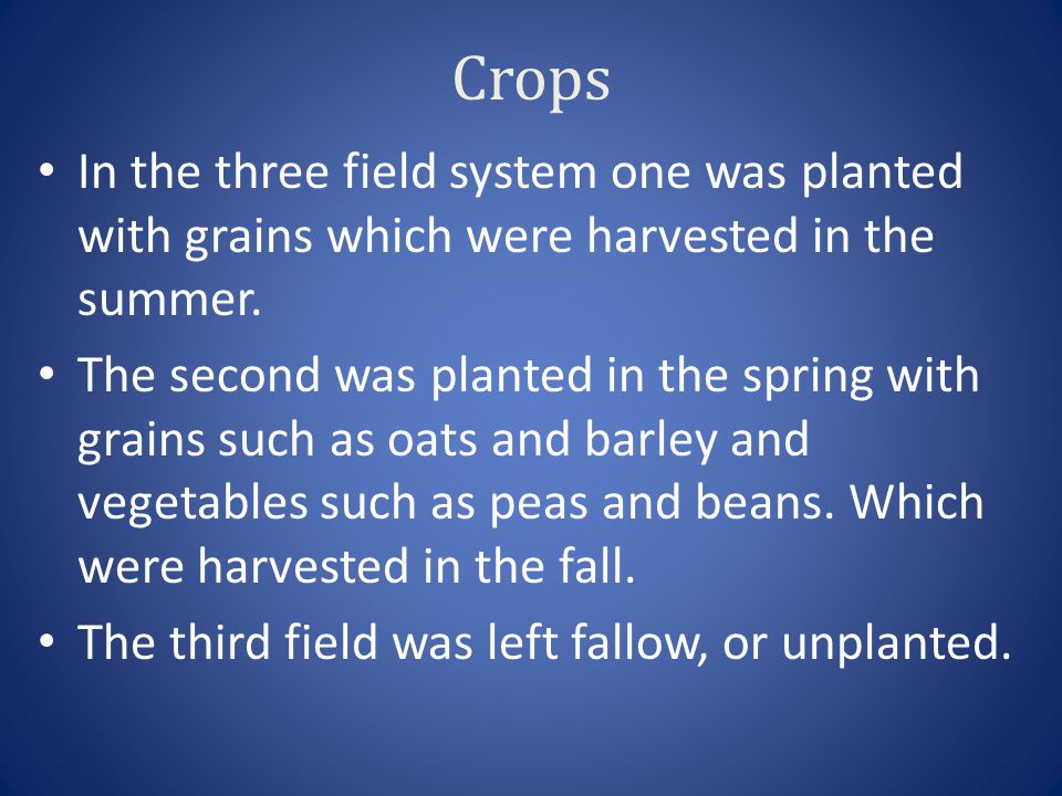 Crops In the three field system one was planted with grains which were harvested in the summer.