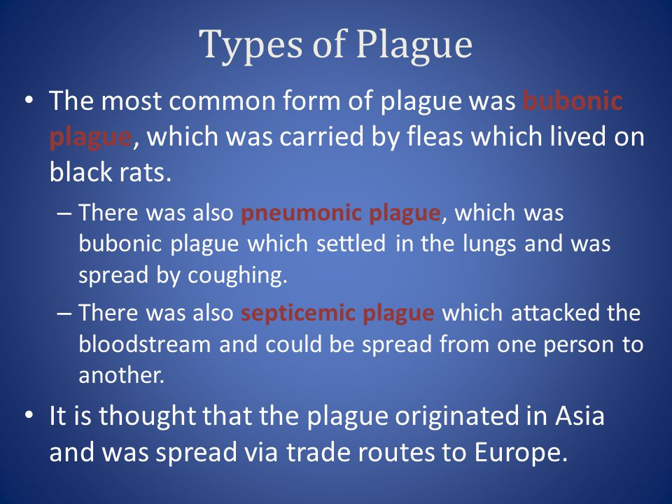 Types of Plague The most common form of plague was bubonic plague, which was carried by fleas which lived on black rats.