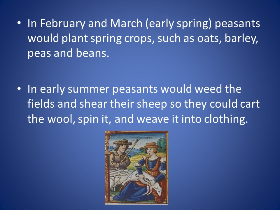 In February and March (early spring) peasants would plant spring crops, such as oats, barley, peas and beans.
