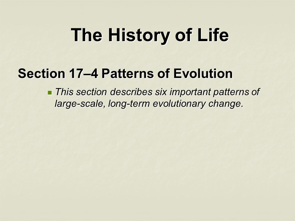 The History of Life Section 17–4 Patterns of Evolution