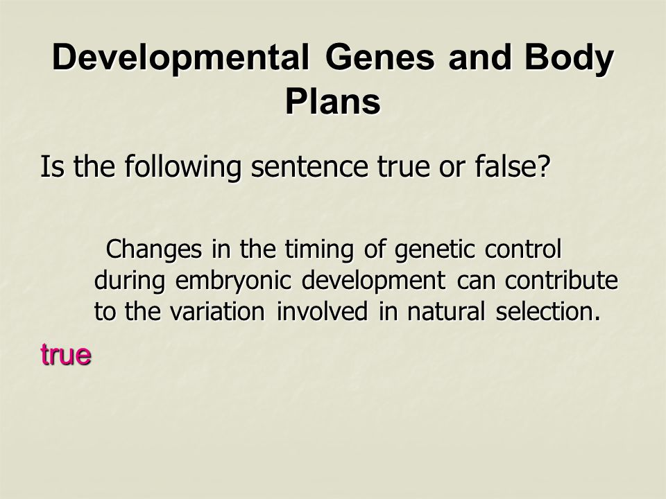 Developmental Genes and Body Plans