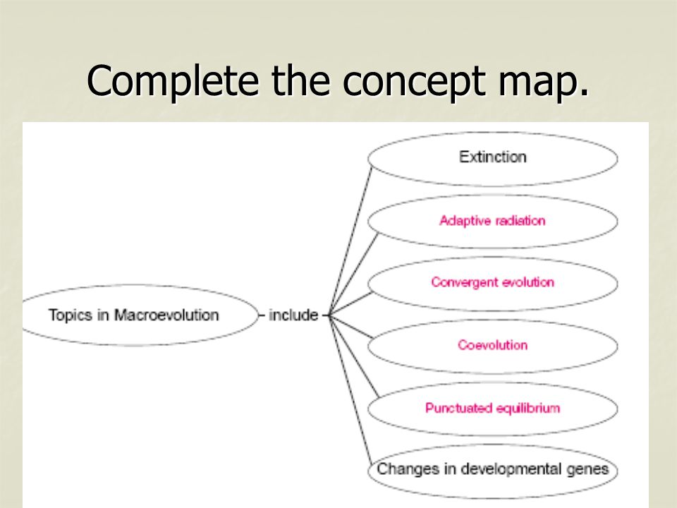 Complete the concept map.