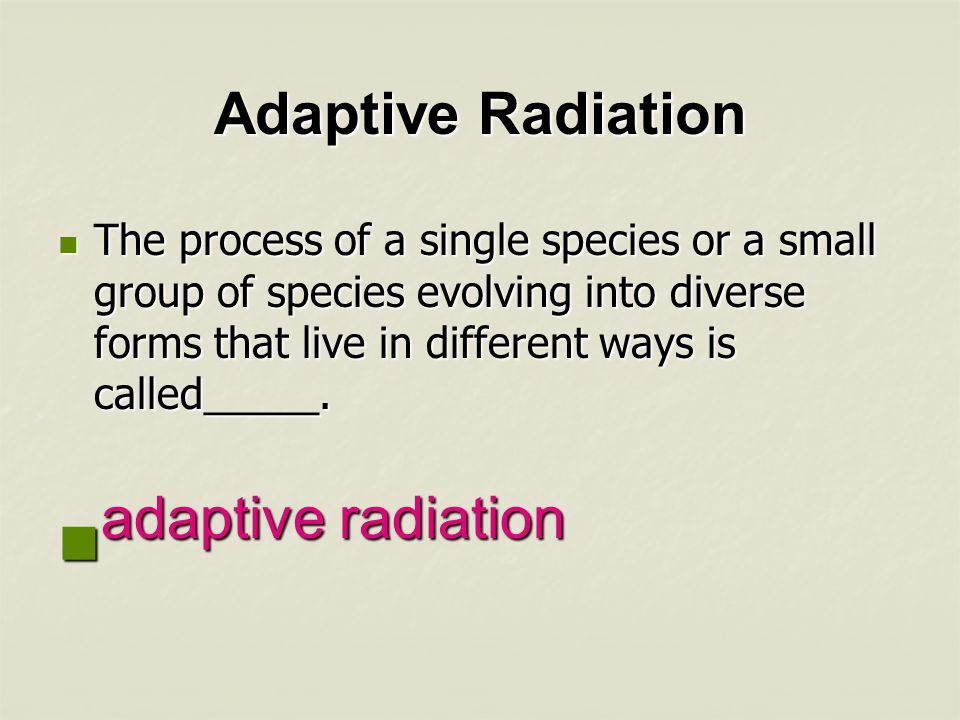 adaptive radiation Adaptive Radiation
