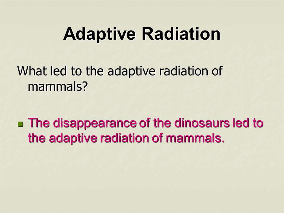 Adaptive Radiation What led to the adaptive radiation of mammals