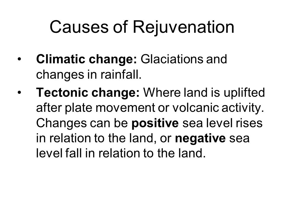 Causes of Rejuvenation