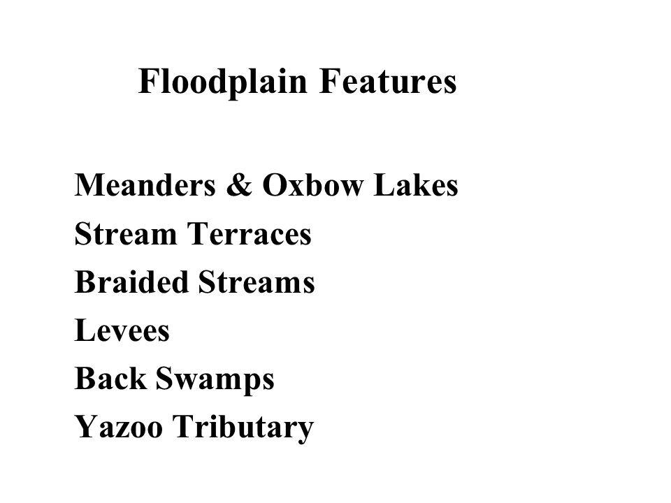 Floodplain Features Meanders & Oxbow Lakes Stream Terraces