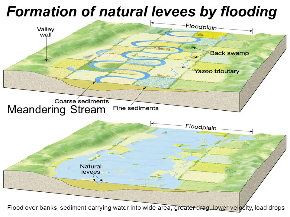 Formation of natural levees by flooding