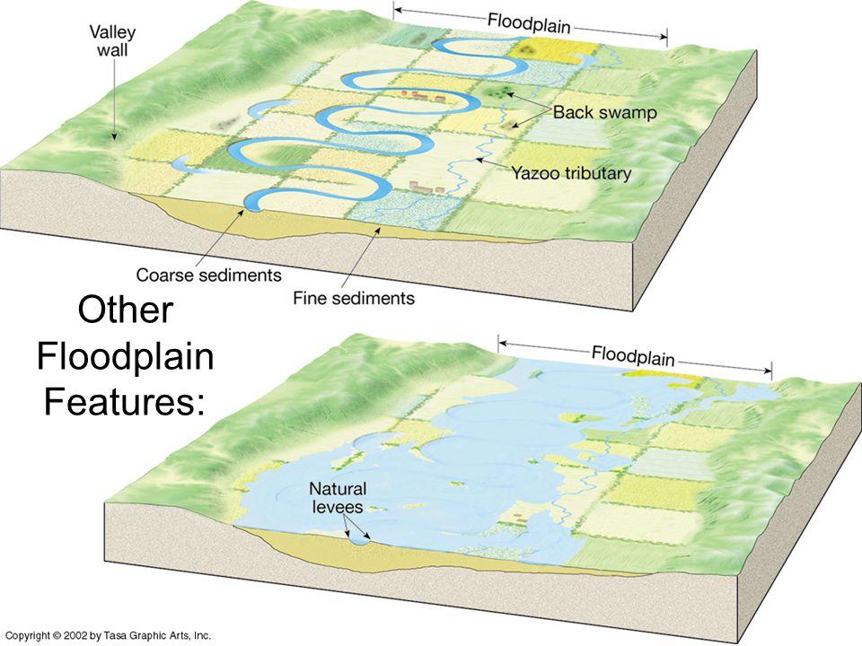 Other Floodplain Features: