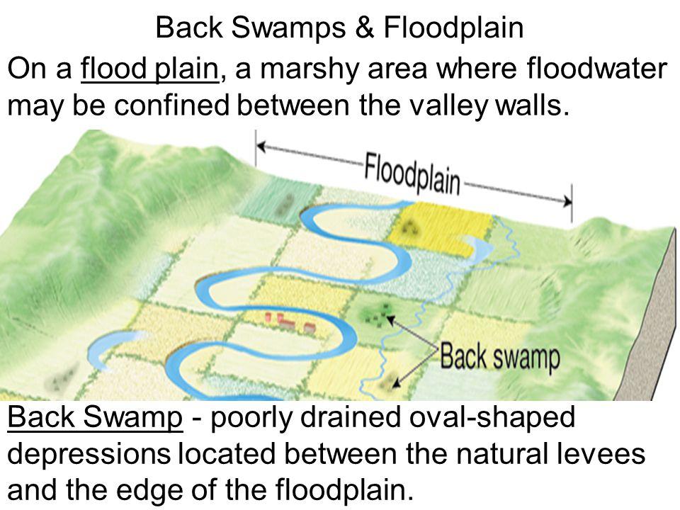 Back Swamps & Floodplain