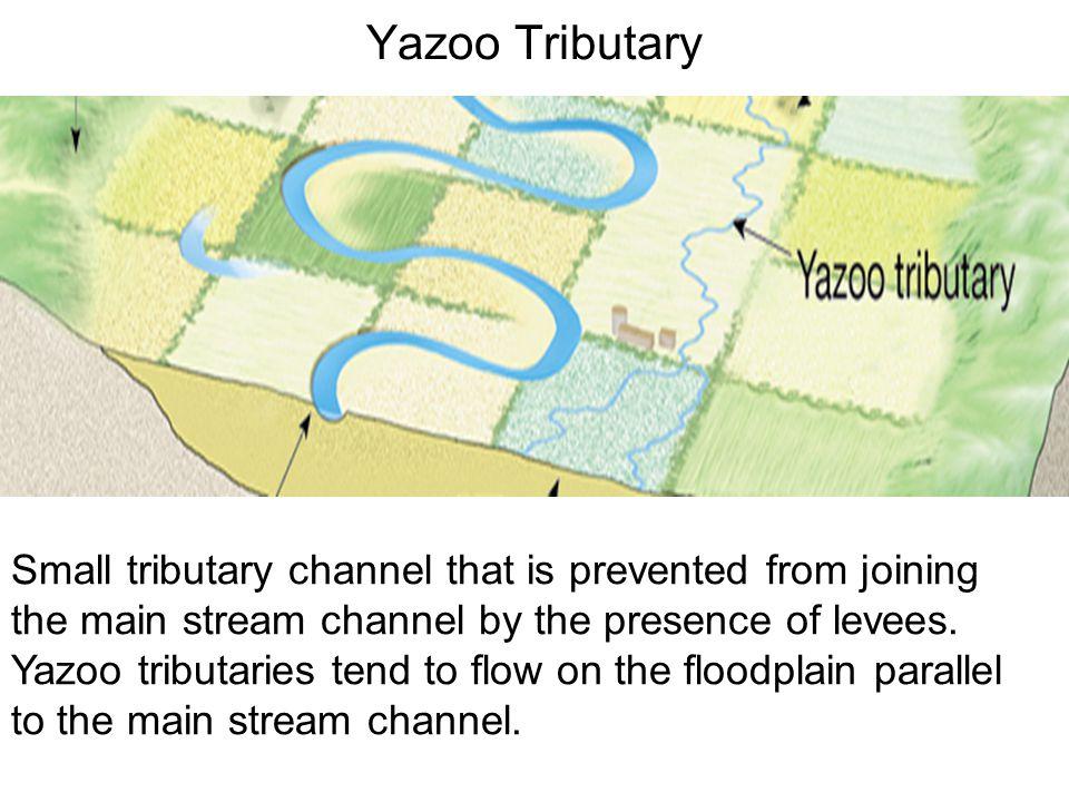 Yazoo Tributary
