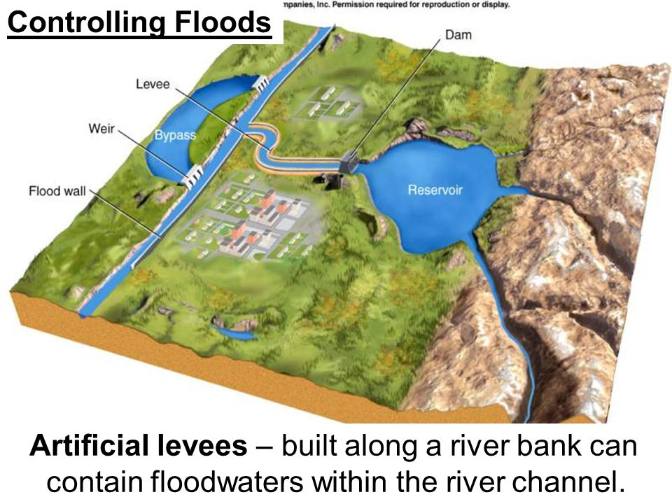 Controlling Floods Artificial levees – built along a river bank can contain floodwaters within the river channel.