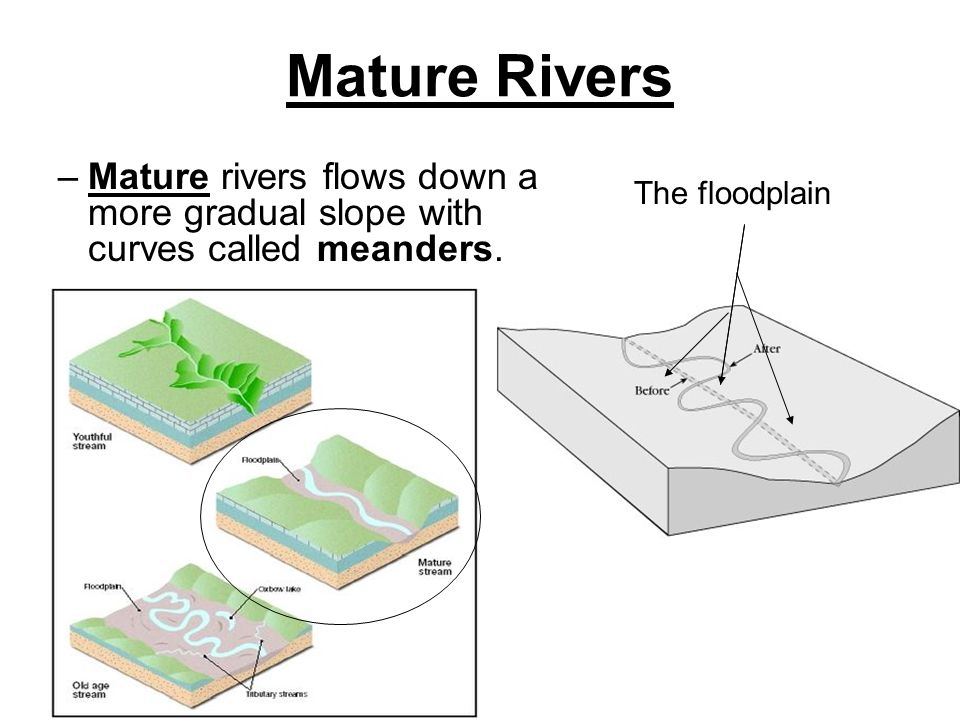 Mature Rivers Mature rivers flows down a more gradual slope with curves called meanders.